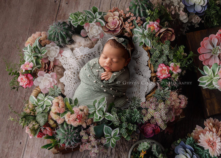 Best Buffalo Newborn Photography-Newborn Baby girl in the middle of succulents