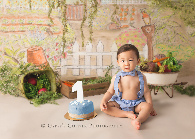 Children Photography Session - Peter Rabbit themed birthday portraits for a little boys first birthday by Gypsy's Corner Photography-8FB