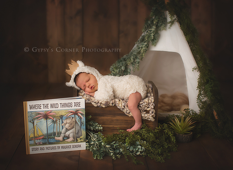 Newborn Photography Session - Where the Wild things are cute baby boy by Gypsys Corner Photography-1Web