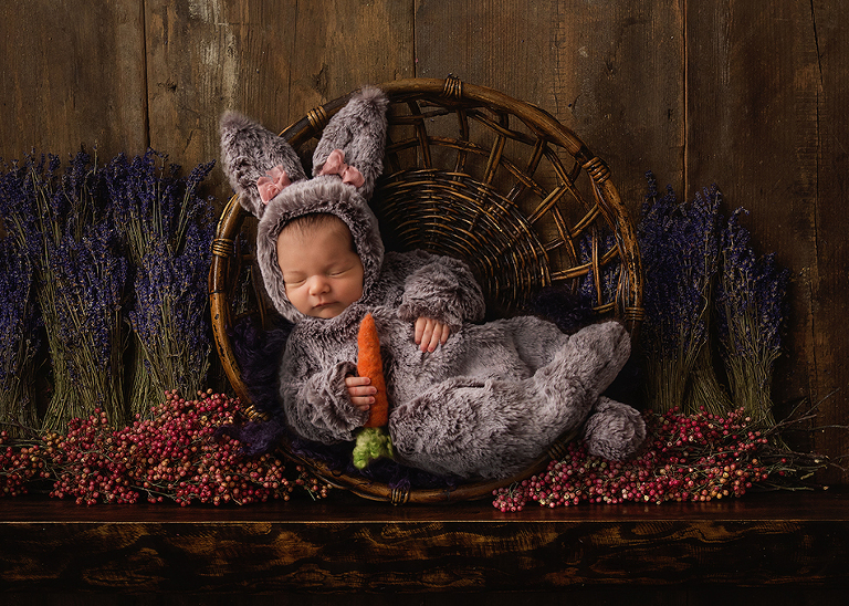 WIlliamsville NY Baby Photographer