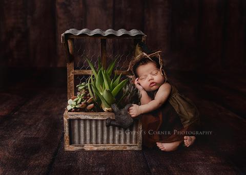 Williamsville NY Newborn Photographer